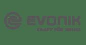 PULSAR Consulting - Evonik