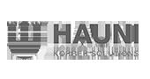 PULSAR Consulting - Hauni